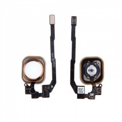 Bouton home Iphone 5S/SE Or